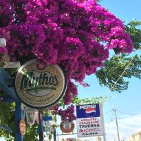 Taverna Michel