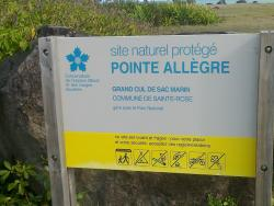 Pointe Allegre