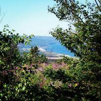 Gillis Mountain Trail Rides