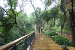 金鸡山公园