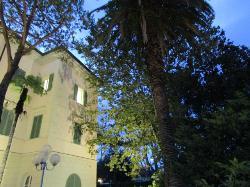 Fondazione Villa Bertelli