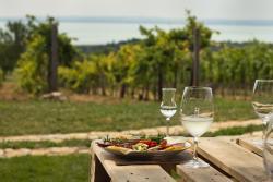 Homola Wine Terrace