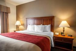 Comfort Inn & Suites Davenport