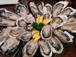 Oyster Dining Gyanto