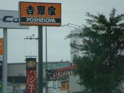Yoshinoya Route 248 Toyota