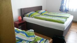 Hotel Elsenztal