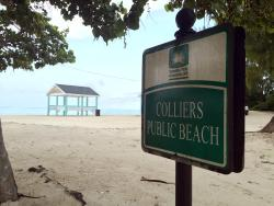 Colliers  Beach