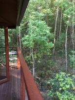 Cairns Reef 'n Rainforest B & B