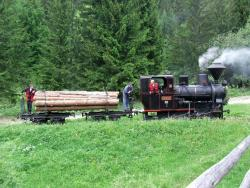 Historical Logging Switchback Railway