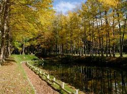 Makkarimura Arboretum