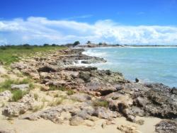 Playa Punta Arena