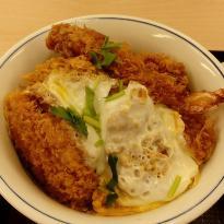 Katsuya Inage Kaigan