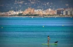 La Mosca Club de Surf
