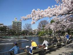 Shimizuike Park