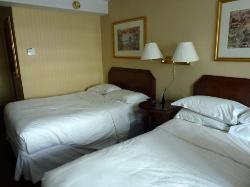 Comodas camas