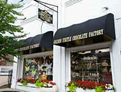 Golden Turtle Chocolate Factory