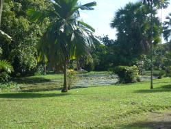 Harrison W. Smith Botanical Garden