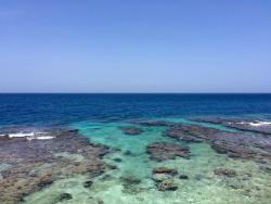 Coral View Dive Center Utila