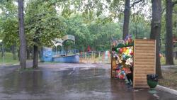 Adventure Park Tarzaniya