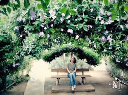 Saegae Ggot Botanical Garden