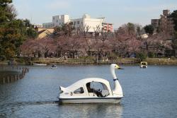 Senzokuike Park