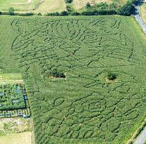 ‪Elton Farm Maize Mazes‬