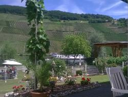 Weingut Karthaeuserhof