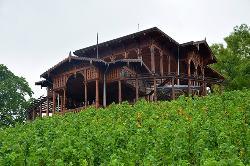 Vinicni Altan