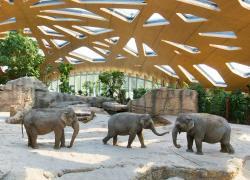 チューリッヒ動物園