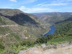 Algueira winery