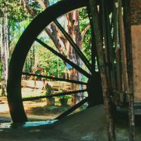 Destilaria Engenho D'Água - Cachaça Coqueiro