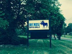 Blue Moose bar & Grille