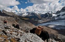 Bhutan Rovers