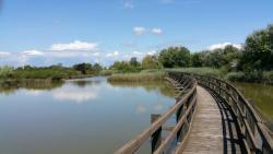Riserva Valle Canal Novo
