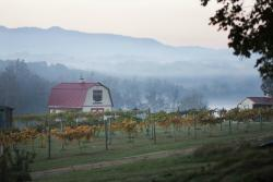 Blue Goose Farm and Vineyards