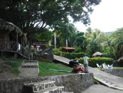 The Monkey Hut