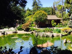 The San Mateo Japanese Garden