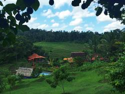 Bali Lush