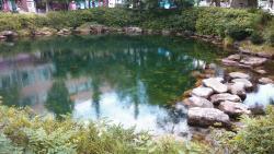 Hwangji Pond