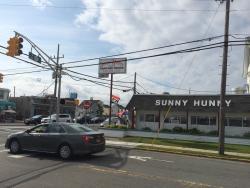 Sunny Hunny
