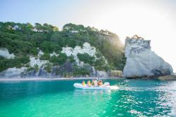 Hahei Explorer Cathedral Cove Boat Tour