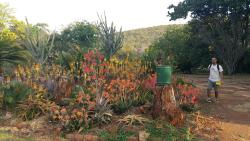 Ewanrigg Botanical Gardens