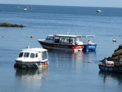 Boatzer Glass Bottom Boat Trips