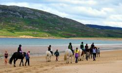 Tullagh Bay Equestrian Centre