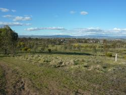 Kangaroo Boundary Road Reserve