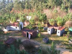 Paintball Campo do Lobo