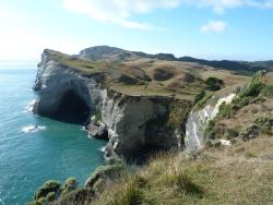 Wharariki Beach Walking Track