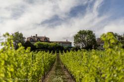 Domaine de Chateauvieux