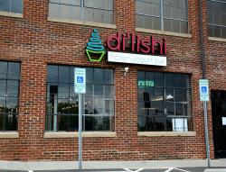 Di'lishi Frozen Yogurt Bar - Hickory