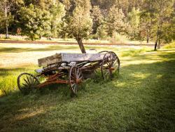 Old Beautiful Wagon
